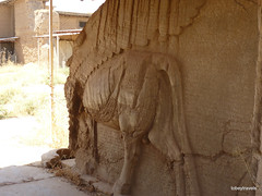 Lamassu Doorway to Throne Room, Nimrud Palace (3).jpg (tobeytravels) Tags: assyrian palace kalhu calah levekh zigararat lamassu throneroom shalmaneser ashurnasirpal layard stele nabu enli unesco