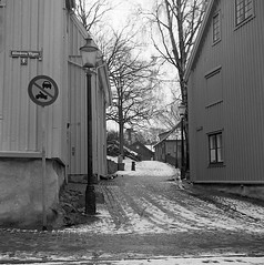 Gathenhielmska kulturreservatet (rotabaga) Tags: sverige sweden svartvitt göteborg gothenburg mediumformat mellanformat majorna lomo lomography lubitel166 tmax400 twinlens blackandwhite bw bwfp 120