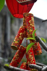 Symbols of a new year (Roving I) Tags: tet tradition decorations lunarnewyear bamboogarden restaurants events danang vertical vietnam