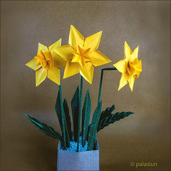 narcissus origami (polelena24) Tags: origami flower plant narcissus daffodil hexagon