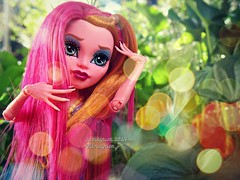 (Linayum) Tags: gigigrant mh monster monsterhigh mattel doll dolls muñeca muñecas toys toy juguetes juguete linayum colorful hair