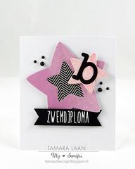 B zwemdiploma (Tamara_77) Tags: dies cas card lawnfawnatics lawnfawn funwithdies