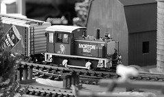 Train-show '18, Morton Arboretum. 1 (EOS) (Mega-Magpie) Tags: canon eos 60d indoors the morton arboretum lisle il illinois dupage usa america train show bw black white mono monochrome