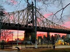 #sunset today in New York  #afterglow #manhattan  #Queens #longislandcity #queensborobridge #NewYork (lelobnu) Tags: sunset afterglow manhattan queens longislandcity queensborobridge newyork