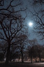 Mond in Nürnberg (georg.kaiblinger) Tags: nikond5500 nürn nürnberg nacht mond moon tree baum blau lan nikon sigma