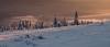 Poland - Beskid Zywiecki - Winter sunrise (Robert Maroszek) Tags: beskid chmury clouds gory mountains naturallight pentaxk5iis robertmaroszek sigma1750mmf28exdcoshsm sniew snow sunrise swiatlo tree trees wschodslonca zywiecki