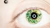 Eyes - Ring Flash (Katherine Ridgley) Tags: toronto eye eyes greeneyes macro detail