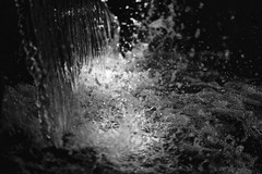 Water is life.... (setoboonhong) Tags: nature water fall splash droplets bw monochrome queen victoria gardens melbourne hmbt bokeh