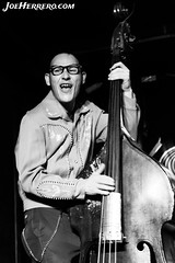 Carlos Slap (Joe Herrero) Tags: aprobado carlos slap madrid gruta 77 rock roll rockabilly concierto concert gig bolo directo live contrabajo upright bass
