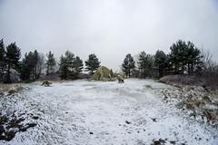 Dinosaurs in the snow (zubzubadoodle) Tags: ks1 samyang 8mm dinosaur triceratops snow teessauruspark genevieveglatt fisheye
