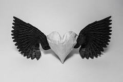 Winged Heart (Arturo-) Tags: wingedheart heart origami wings coração alado asas ob preto e branco black white bw pb papel paper dobradura sanduíche tissuefoil ob天使之心