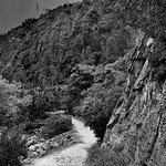 Walking a Nature Trail in the Hetch Hetchy Valley (Black & White, Yosemite National Park) thumbnail