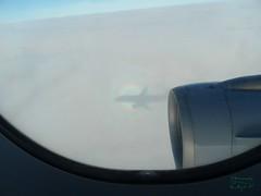 Brocken spectre. (Jurek.P) Tags: widmobrockenu brockenspectre flight inflight intheplane window jurekp samsungwb650