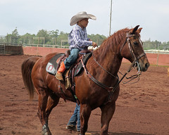 young paniolo (BarryFackler) Tags: rodeo keikirodeo parkerranch kamuela paniolo contest sport arena cowboy boy male youngman horse rider equine animal domesticanimal ranch ranching western horseman outdoor action kohala 2018 riding horsebackriding equestrian rodeoarena waimea kamuelahi cowboyhat saddle reins bridle saddleblanket spurs bluejeans kid child youth waimeahi hawaiianculture hawaiianhistory hawaiiantradition panioloculture boots hooves stirrups withers mane cowboyboots northhawaii barryfackler barronfackler bigisland hawaii hawaiiisland hawaiicounty hawaiianislands island sandwichislands polynesia tropical
