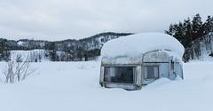Forgotten caravan in the snow (Ivan Mæland) Tags: snow caravan forgotten living winter tree worn norway nature vintage sky forest dirty