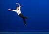 Introdans (Hf-Photo) Tags: dance dancer dancephoto balletlife ballet balletto introdans loin 5