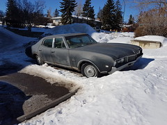 1968 Oldsmobile Cutlass (dave_7) Tags: oldsmobile cutlass classic car 1968