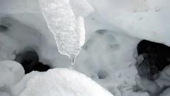 Detail (Daphne-8) Tags: ice schnee snow sneeuw ijs eis winter suisse switzerland schweiz zwitserland hörnli suiça suiza svizzera glace