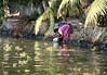 Kerala Backwaters - Washing Up (zorro1945) Tags: alleppey alleppuzha kerala india asia asie southindia keralabackwaters backwaters canal river woman lady washing washingup dishes washingdishes