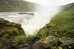 Gullfoss - Iceland (virtualwayfarer) Tags: gullfossi southernregion iceland is gullfoss foss waterfall water flow longexposure nature landscape landscapephotography viisticeland icelandic naturalbeauty dramatic incrediblenature wild wildnature natural sony sonyalpha a7rii travel goldencircle goldentriangle naturephotography naturephotographer whattosee whattodo cloudy clouds alexberger virtualwayfarer travelblog flower flowers yellow yellowflowers bloom blooming roadtrip roadtripiceland