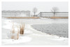 Westland winter (leo.roos) Tags: ice frozen water kassen ijs hothouses greenhouses snow sneeuw winter westland wollebrand a7rii meyerprimoplan5819 exakta 1954 darosa leoroos dayprime day58 dayprime2018 dyxum challenge prime primes lens lenzen brandpuntsafstand focallength fl