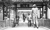 Wait - Chengdu, China (成都, 中國) (dlau Photography) Tags: wait chengdu china 成都 中國 等 travel tourist vacation visitor people lifestyle life style sightseeing 游览 遊覽 trip 旅遊 旅游 local 当地 當地 city 城市 urban tour scenery 风景 風景 weather 天氣 天气 中国 monochrome 單色 单色 black white blackandwhite 黑白 黑 白 flickrunitedaward astoundingimage