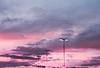 Lights in the Strawberry Sky (Hayden_Williams) Tags: streetlight light lamp streetlamp sky clouds cloudy cloud sunset dusk purple lomography lomo lomochromepurplexr100400 analog analogue canonae1 fd50mmf18 film dream dreamy dreaming