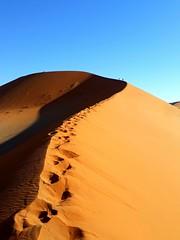20171009_171315 (dieter.schultheiss) Tags: namibia naankuse lodge erindi game sossusvlei swakopmund safari cheetah lion gepard oryx dunes elephant elefant wild dog wildhund gnu zebra crocodile krokodil san bushmen buschmänner dead vlei solitaire