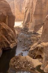 Guelta d'Archeï, Chad