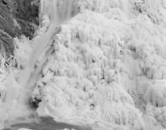 Winter flowers (baro-nite) Tags: cullasajariver waterfall nantahalanationalforest westernnorthcarolina ice largeformat bw film ilford fp4 ddx arcaswiss fline 4x5 caltariin156135mm epsonv700 affinityphoto