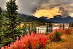 Mistaya Creek, Banff National Park, Alta, Canada (klauslang99) Tags: klauslang nature naturalworld northamerica national banff park alberta canada rocky mountains water mountain clouds landscape