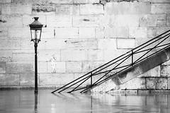 Swing parisien (Régis (R208)) Tags: paris flood crue seine eau quai