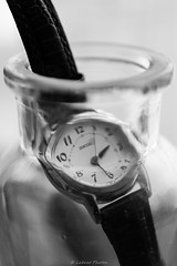 If I could save time in a bottle... (mslabrat13) Tags: inabottle macromonday bottle macro time watch glass 7dwf monochrome blackand white