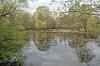 DSC_6861_ Marais de Fretin (yves62160) Tags: zones humides calme marais nord pévèle