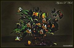Composizione con fiori finti - Febbraio-2018 (agostinodascoli) Tags: fiori composizione nikon nikkor colore fullcolor art digitalart digitalpainting nature texture agostinodascoli photoshop photopainting cianciana sicilia creative rose foglie