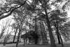 Aqueduc de Roquevafour (Lionelcolomb) Tags: noirblanc noiretblanc blackwhite bw gris grey architecture arche arc aixenprovence provence provencealpescôtedazur france 13 construction aqueduc arbres tree ciel sky cloud nuages nature exterieur outdoor perspective vers le haut contre plongée canon canon1200d sigma