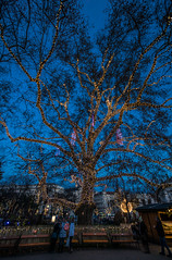 Lit (Bence Boros) Tags: sony alpha a77m2 a77ii christmas vienna wien austria weinachtsmarkt blue hour wideangle lowlight handheld park people holiday winter december