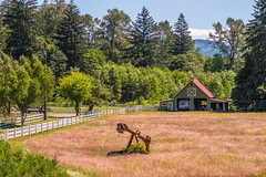 Summer in the Country (MIKOFOX ⌘ Thanks 4 Your Faves!) Tags: canada trees grass meadow barn rural xt2 vancouverisland learnfromexif july landscape provia fence bc fujifilmxt2 mikofox showyourexif britishcolumbia xf18135mmf3556rlmoiswr