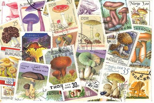 Mushroom Stamp pc