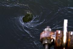 Vortex at the Culvert (brucetopher) Tags: whirlpool vortex twist spin spiral spiraling twisting spinning round down depth water fluid dynamic gravity flow pressure physics motion eye around stream culvert tide