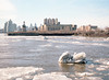 Cold and Sunny in Philly (Scuffles33) Tags: philly portra kodak mediumformat mamiya645