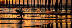 Sunset Surfer (Greg Adams Photography) Tags: beach surfer huntingtonbeach sunset pier wharf waves running silhouette reflections reflection lines golden sun pacific southerncalifornia ca california calif orangecounty travel shore shoreline surfboard sky dusk water