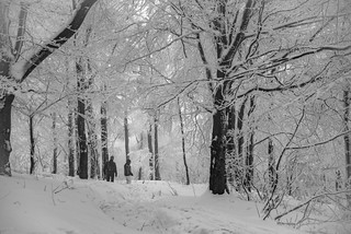 Das ist Winter