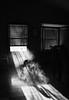 (CMFRIESE) Tags: blackandwhite nikon d810 rayoflight fog trees blinds shadow cast wood horse