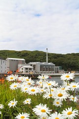 Caol Ila Distillery