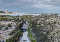 Cathedral in sunlight (M McM) Tags: yellow beach rocks sea water seashore st andrews cathedral sky clouds seaweed lichen town fife landscape scotland coastline coast sands canoneos760d hdr
