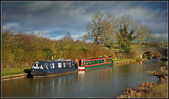 All quiet on the cut (Jason 87030) Tags: derwent6 walk health local braunston cut crt oxfordcanal sheep fields cat pussy ducks watch birds tree cold weather clouds sky light lighting man conversation pleasant narrowboat leisure bridge 69 towpath boating scene view frame border color colour northants northamptonshire calories celery lunch january 2018 water
