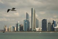 _MG_4738 (David_Hernández) Tags: arab emirates