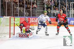 DEL2018-28.jpg (sushysan.de) Tags: bundesliga del deutscheeishockeyliga eishockey iserlohn iserlohnroosters kec köln kölnerhaie lanxessarena pix pixsportfotos roosters saison20172018 pixsportfotosde sushysan sushysande