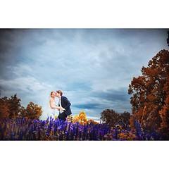 man kann auch ohne blitz schicke bilder an einem tag mit schlechtem wetter machen. :D warm war uns allen aber trotzdem nicht. dieses bild habe ich am Höhenpark Killesberg fotografiert. mehr unter http://ift.tt/1lX56G6 #hochzeitsfotograf (hochzeitsfotograf.stuttgart) Tags: hochzeitsfotograf hochzeitsfotografie hochzeit hochzeitsbilder braut bräutigam brautpaar photoshop lightroom fotograf photographer photography wedding weddingphotographer bride groom couple